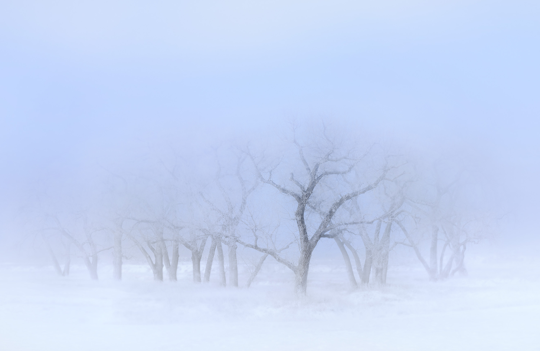 21-Winter-Mist